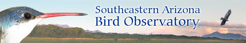 Southeastern Arizona Bird Observatory