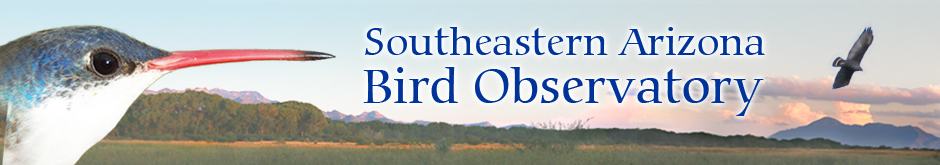 Southeastern Arizona Bird Observatory
