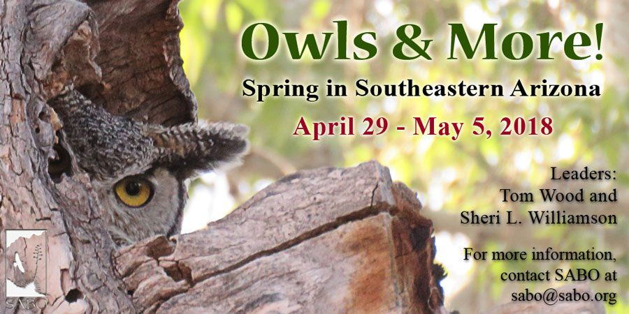 Reservations for the 2018 Owls & More! tour now available